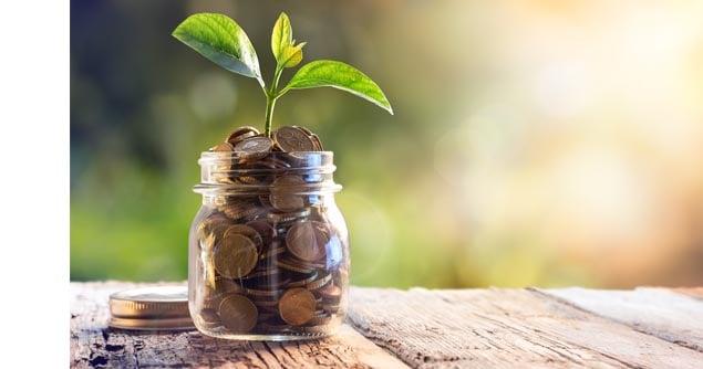 savings jar plant2