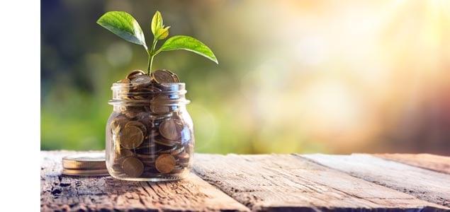 savings jar plant4
